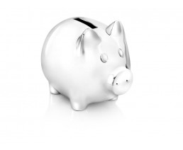 Money Box Pig, silver colour